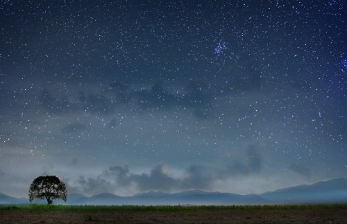 Sapheneia Starry Sky 17 x 11